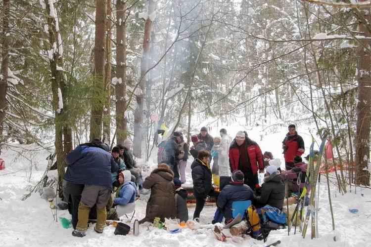 в подмосковье отдых фото зимний