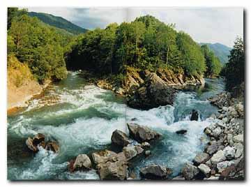 Река Белая на слиянии с рекой Кешой