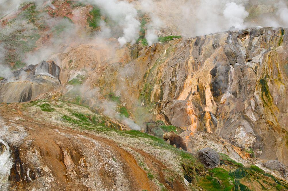 Камчатка - Долина гейзеров