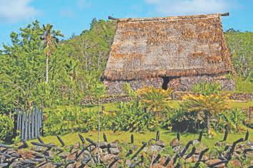 Фиджи.Типичный фиджийский дом