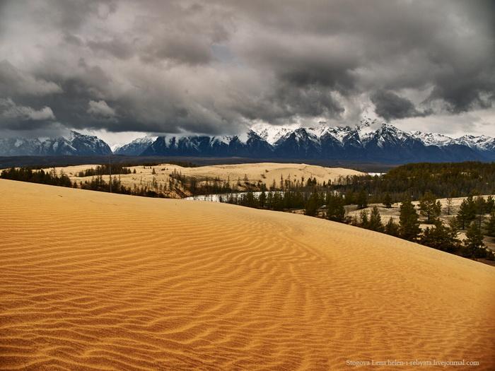 Чарские пески Забайкальский край
