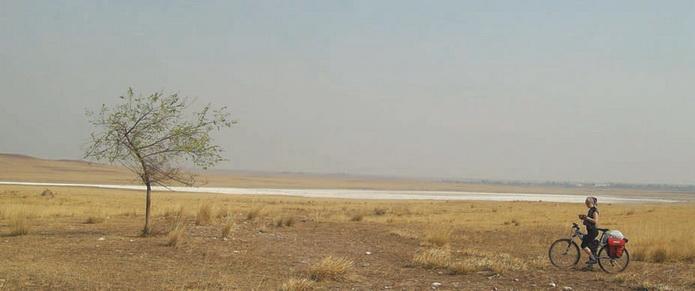 Два одиночества. На заднем плане видна котловина, полностью покрытая солевым панцирем (снято в р-не станции Капчалы)