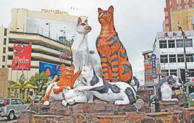 Борнео. Гигантские кошки в Кучинге (штат Саравак, остров Борнео)