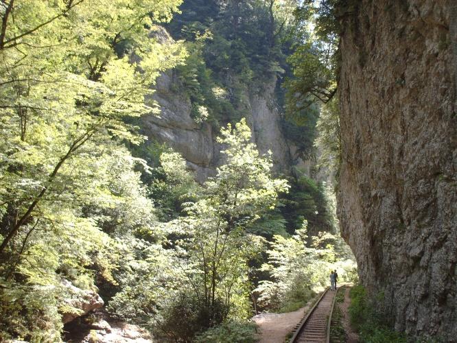 Узкоколейка фото от СВ-Астур. Узкоколейка в Гуамском ущелье в Краснодарском крае на юге России в горах
