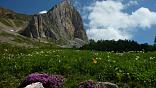 """<span style=""""line-height: 20px;""""><a href=""""http://svastour.ru/fisht.htm"""" ><b>Маршрут 30</b></a>- это удивительное сочетание животворящего солнца, кристально-чистого горного воздуха, благодатных лесов, скалистых теснин с изумрудными водопадами, суровых горных вершин, уникальных достопримечательностей и абсолютной тишины, которая лечит душу городского жителя.</span><b></b>"""